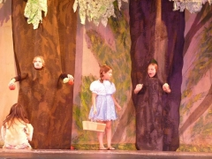 dorothy-and-apple-trees-theater-camp